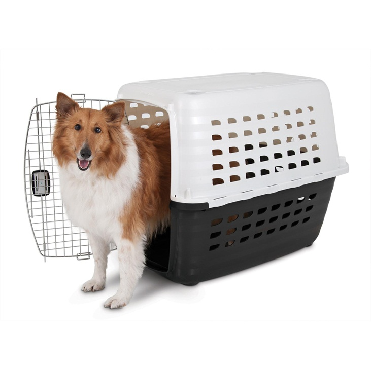 Dog crates petsmart