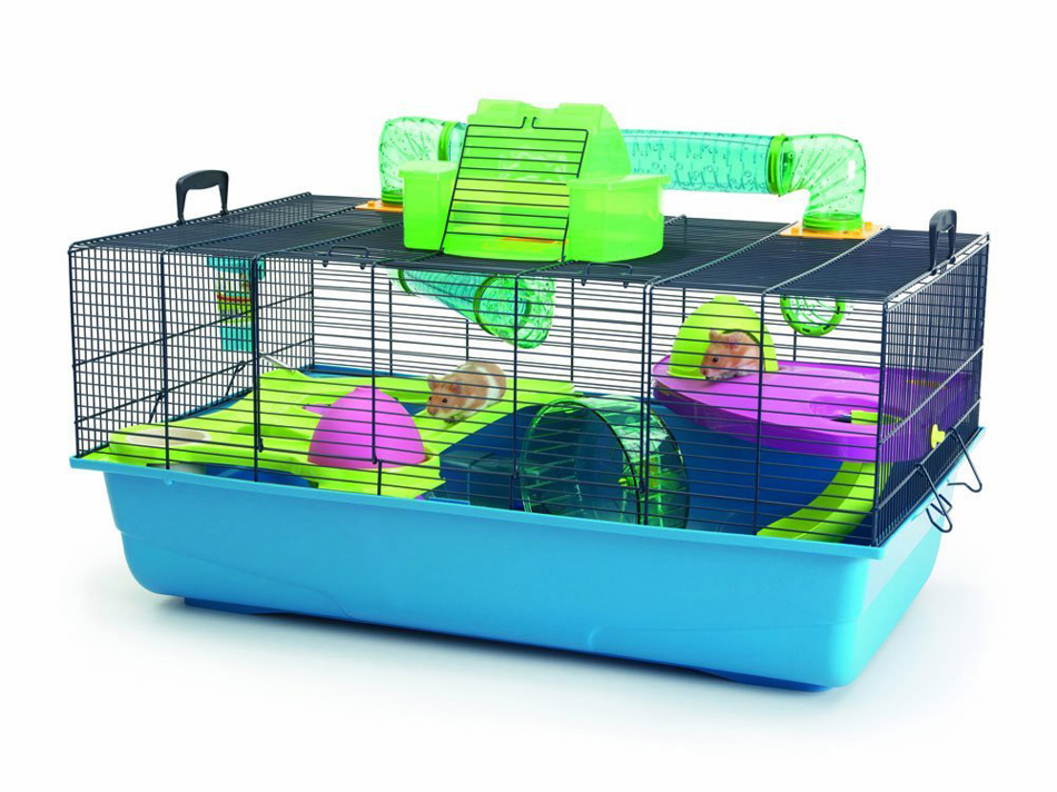 What are the minimum dimensions of a hamster cage